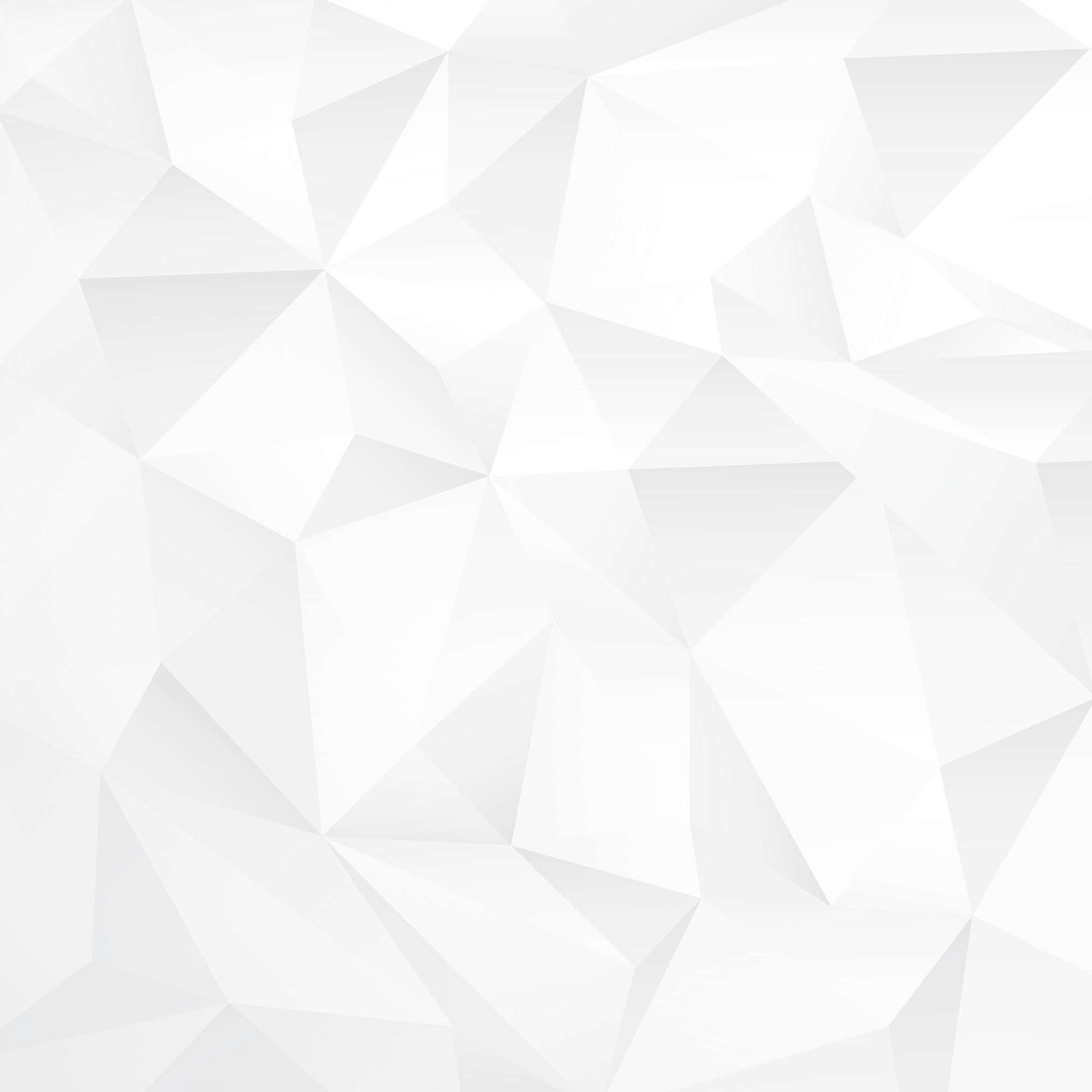 White Polygon Background - Rosen Markov